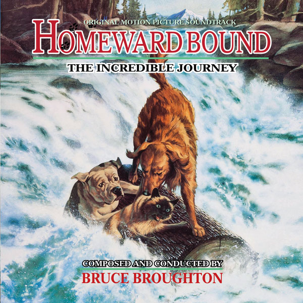 Homeward Bound: The Incredible Journey, Detalles