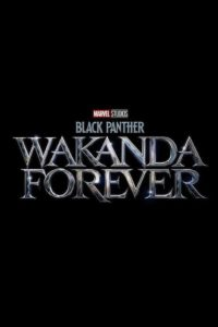 Póster Black Panther: Wakanda Forever